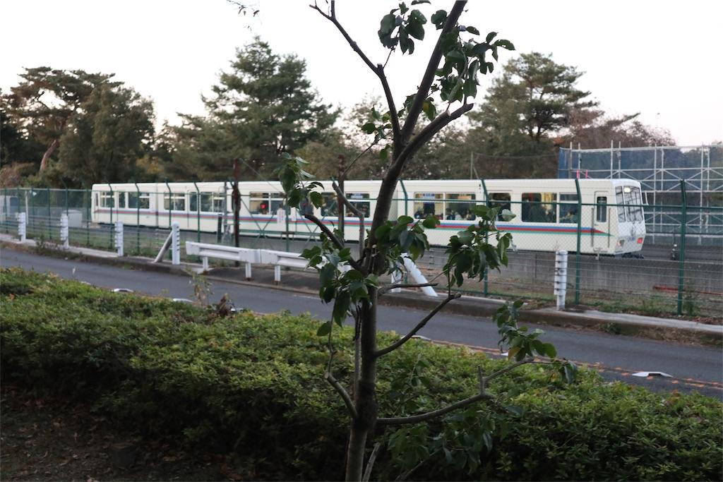 f:id:chizuchizuko:20191201181436j:image