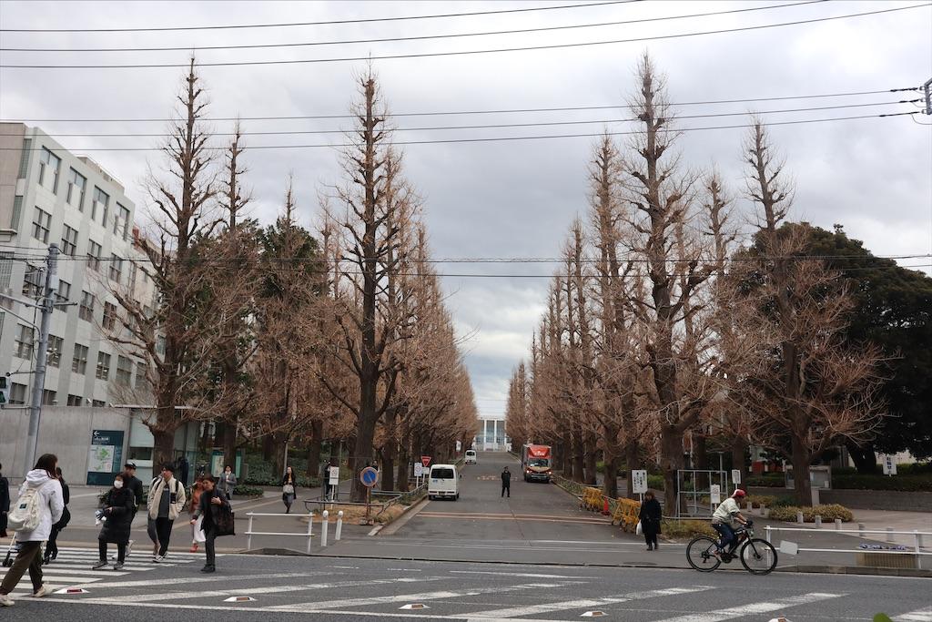 f:id:chizuchizuko:20191227230208j:image