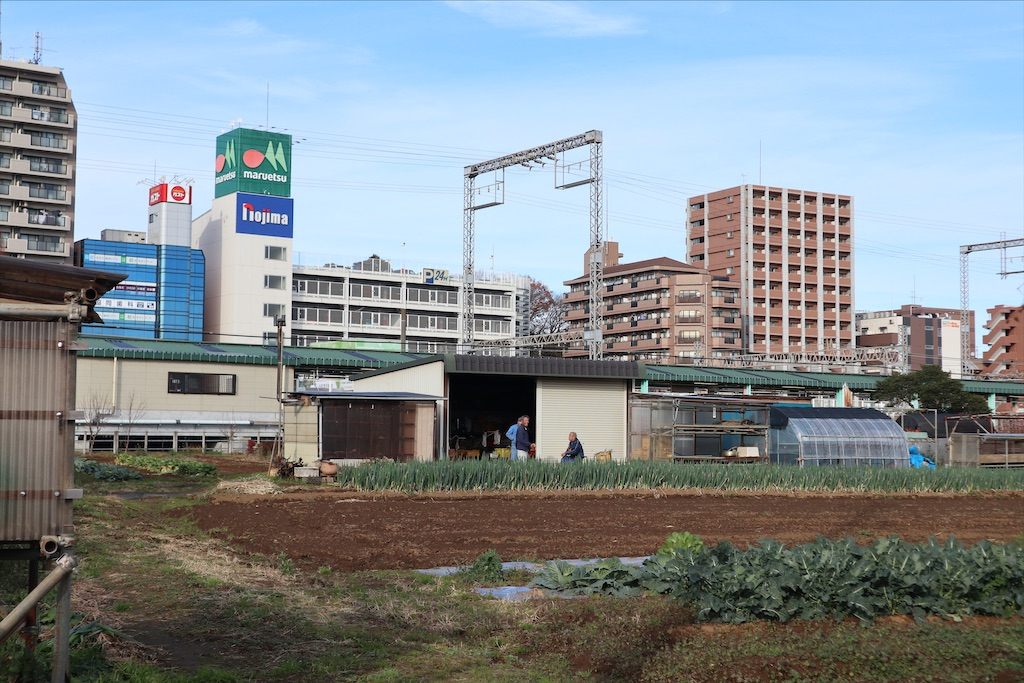 f:id:chizuchizuko:20191227232136j:image