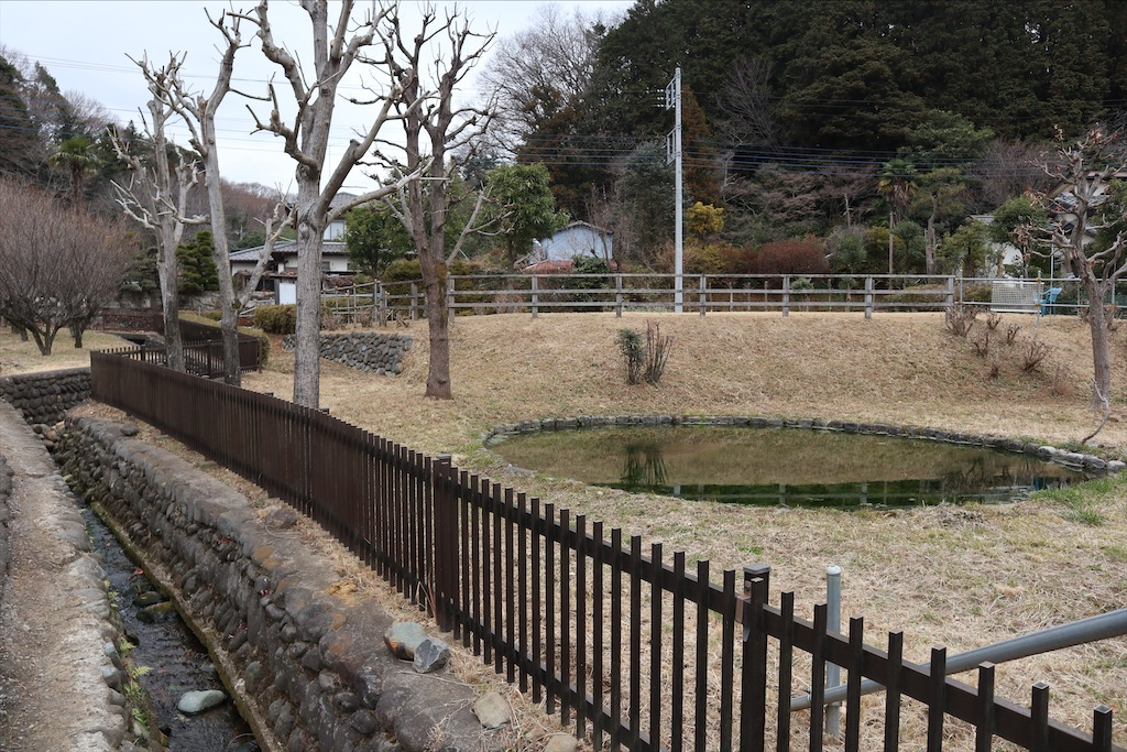 f:id:chizuchizuko:20200107193116j:image