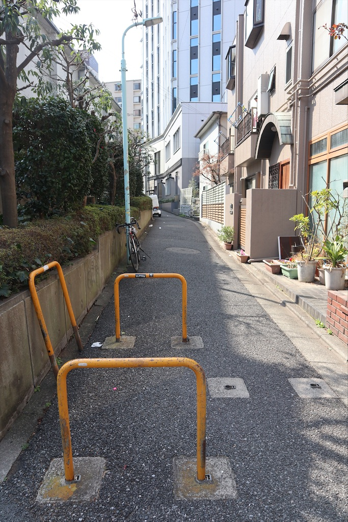 f:id:chizuchizuko:20200301152010j:plain