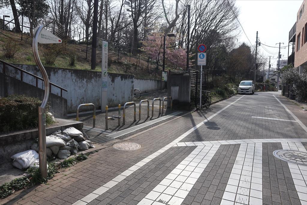 f:id:chizuchizuko:20200301152233j:image