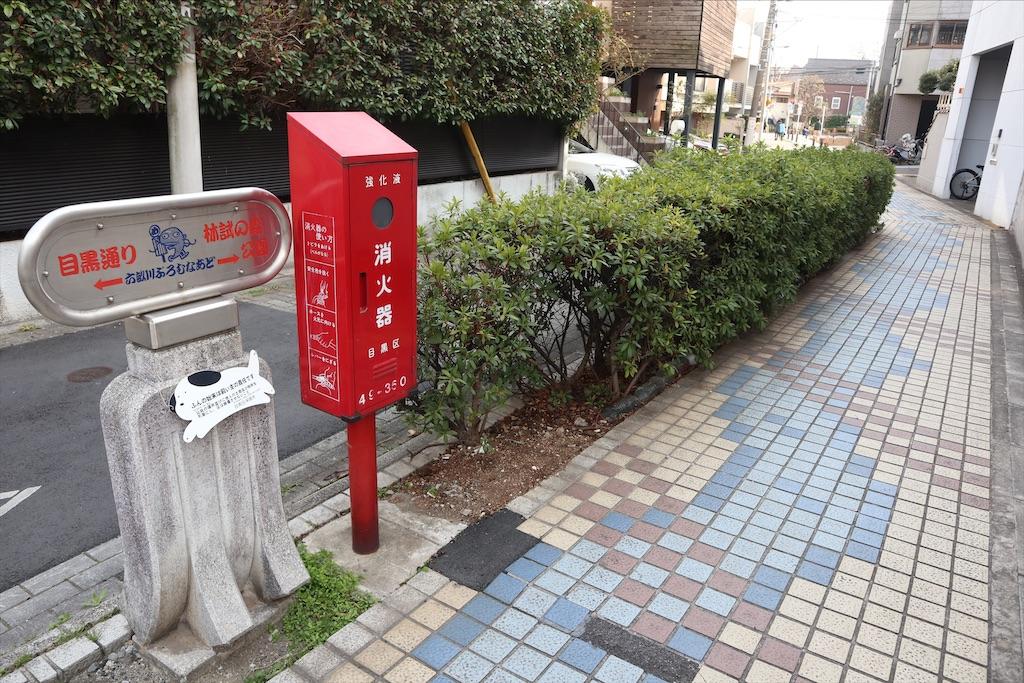 f:id:chizuchizuko:20200301152252j:plain