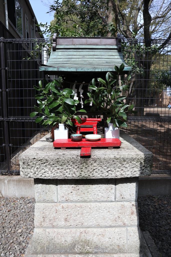 f:id:chizuchizuko:20210319190332j:image