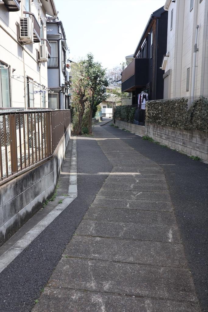 f:id:chizuchizuko:20210319190451j:image