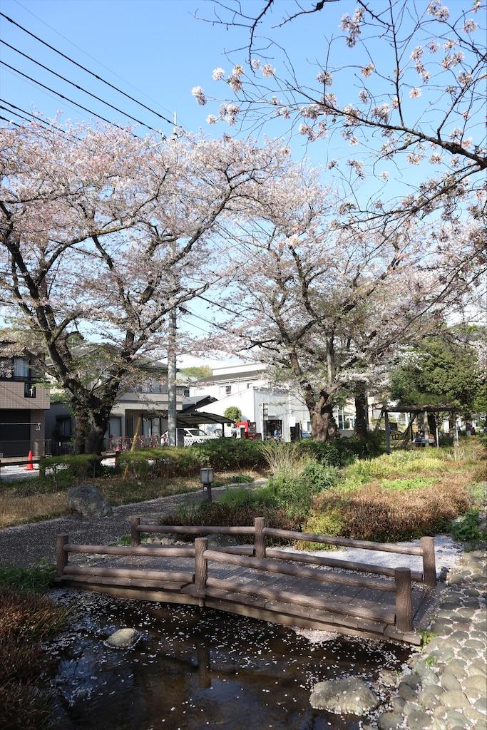 f:id:chizuchizuko:20210404095817j:image