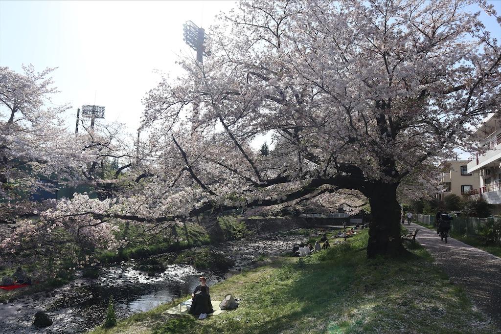 f:id:chizuchizuko:20210404095834j:image