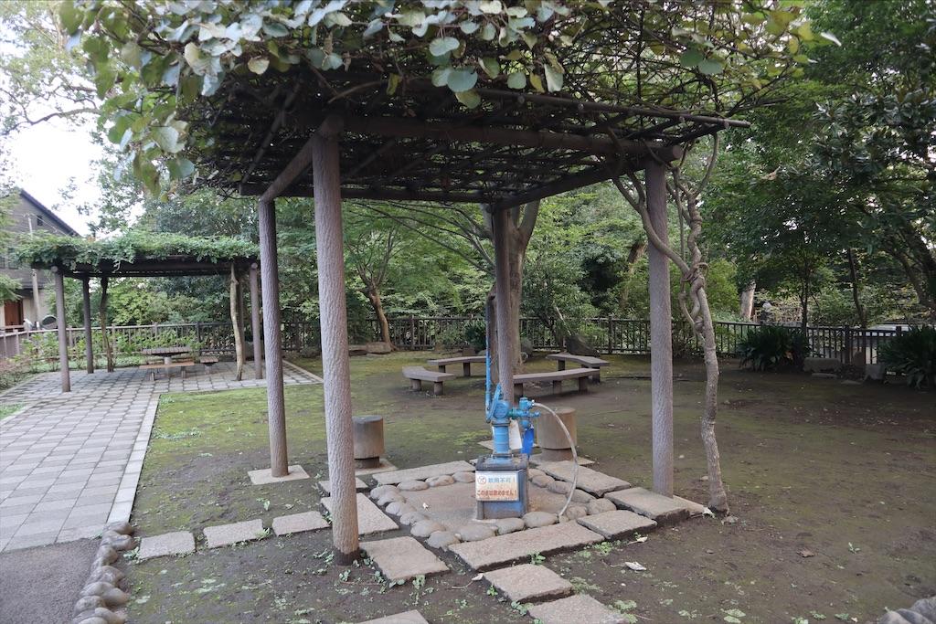 f:id:chizuchizuko:20210530185427j:image