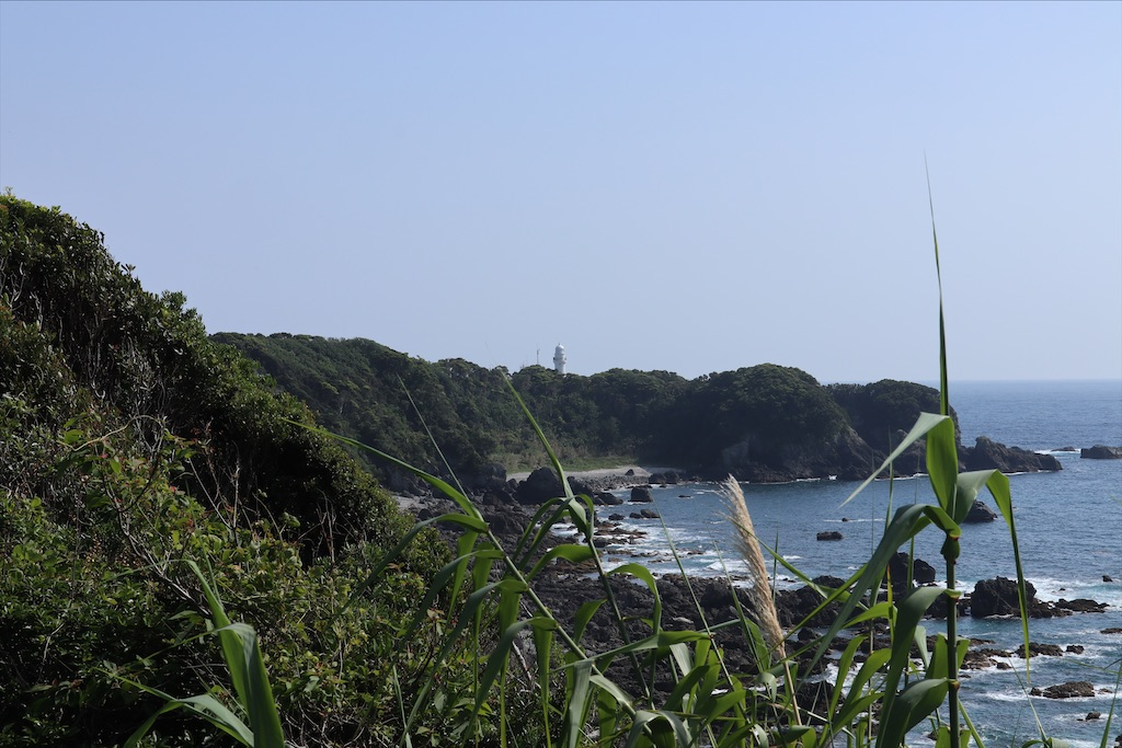 f:id:chizuchizuko:20210709233453j:image