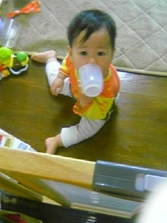 f:id:chizukichizuki:20060514143229j:image