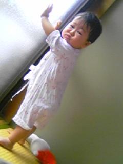 f:id:chizukichizuki:20060618093153j:image