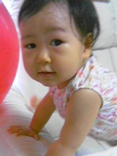 f:id:chizukichizuki:20060902171343j:image