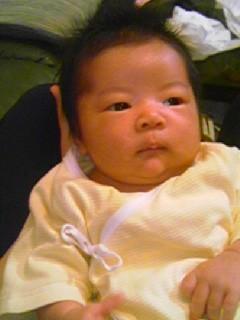 f:id:chizukichizuki:20070525214313j:image