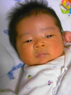 f:id:chizukichizuki:20070530183528j:image