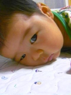 f:id:chizukichizuki:20070620180145j:image
