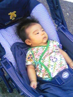 f:id:chizukichizuki:20070628173411j:image