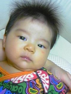 f:id:chizukichizuki:20070722001249j:image