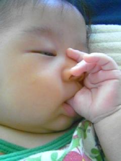 f:id:chizukichizuki:20070808124323j:image