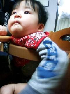 f:id:chizukichizuki:20071229173346j:image