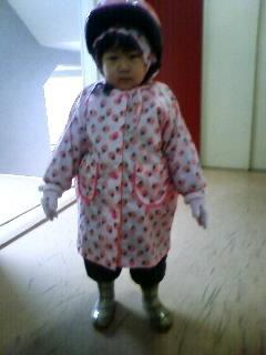 f:id:chizukichizuki:20080123084630j:image