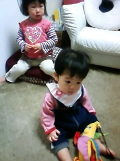 f:id:chizukichizuki:20080124172718j:image