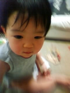 f:id:chizukichizuki:20080305190948j:image