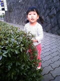 f:id:chizukichizuki:20080311170538j:image