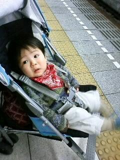 f:id:chizukichizuki:20080313154435j:image