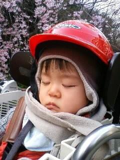 f:id:chizukichizuki:20080326153239j:image