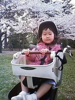 f:id:chizukichizuki:20080403171706j:image