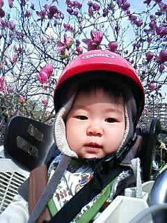 f:id:chizukichizuki:20080404144907j:image