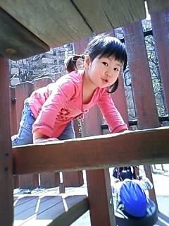 f:id:chizukichizuki:20080405121210j:image
