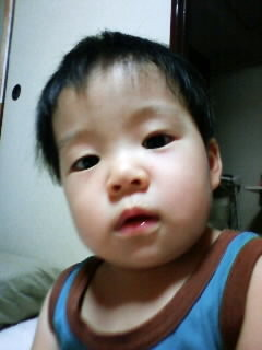 f:id:chizukichizuki:20080820212958j:image