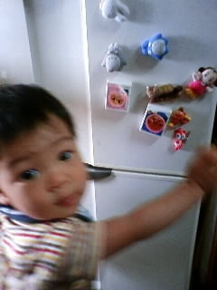 f:id:chizukichizuki:20081005105834j:image