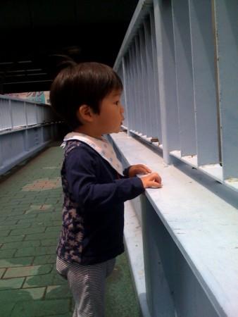 f:id:chizukichizuki:20090531112231j:image
