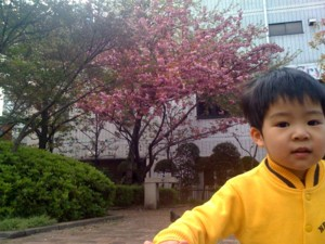 f:id:chizukichizuki:20100417103504j:image