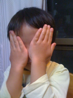 f:id:chizukichizuki:20101123201517j:image