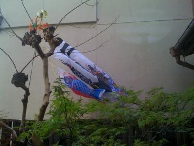 f:id:chizukichizuki:20110418083609j:image