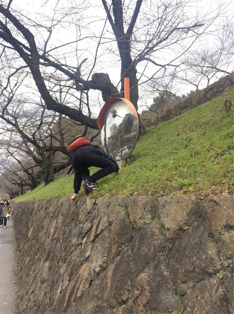 f:id:chizukichizuki:20170410003617j:image