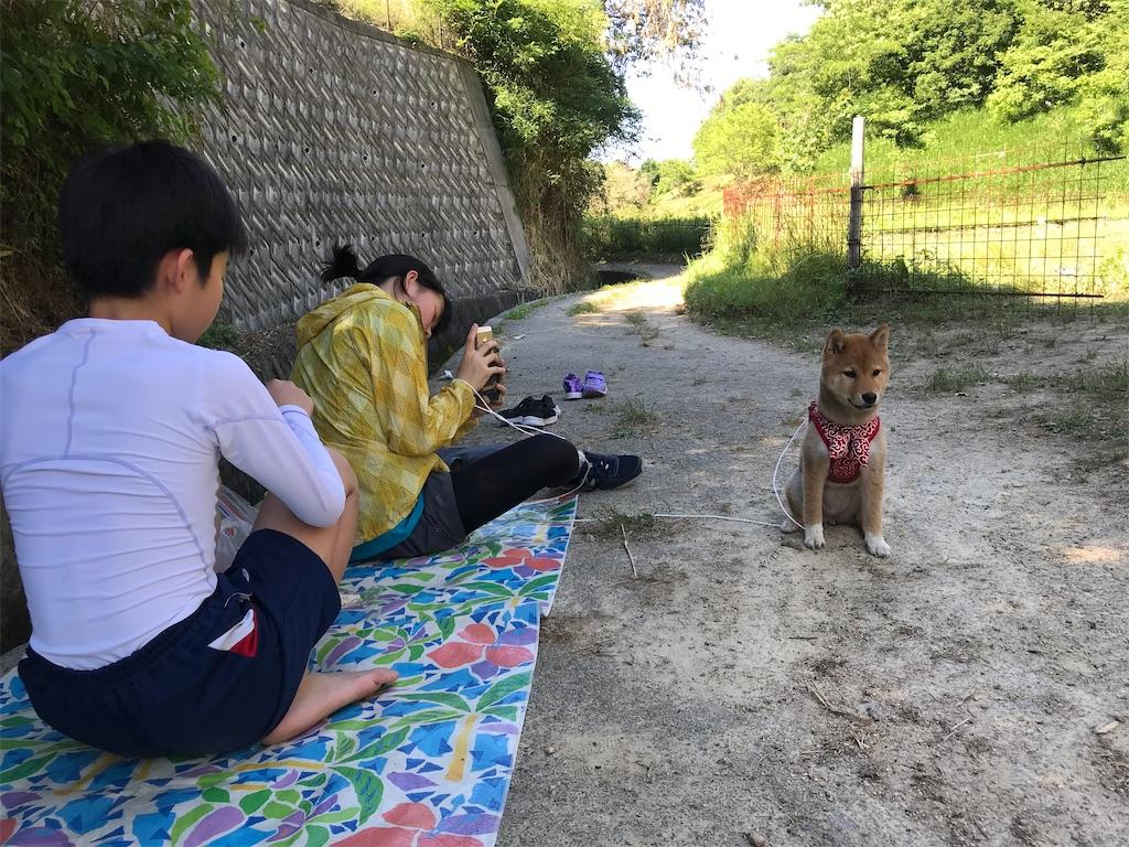 f:id:chizukichizuki:20200708091557j:image