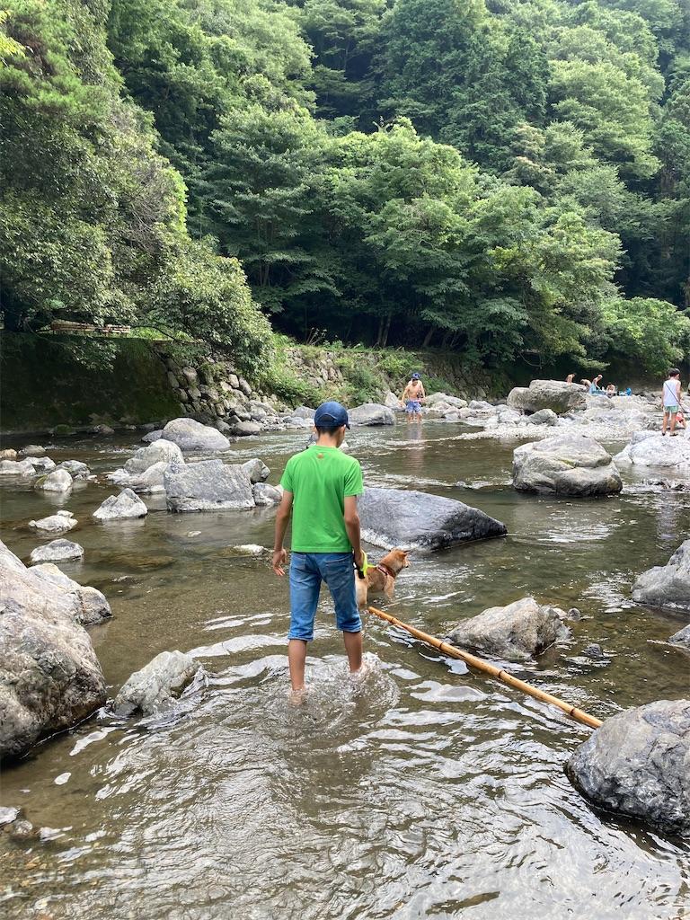 f:id:chizukichizuki:20210802002552j:image