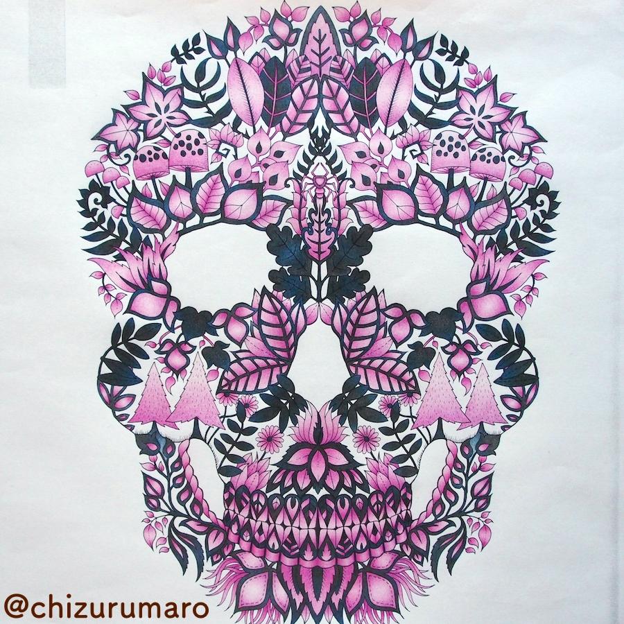 f:id:chizurumaro:20170224163939j:plain
