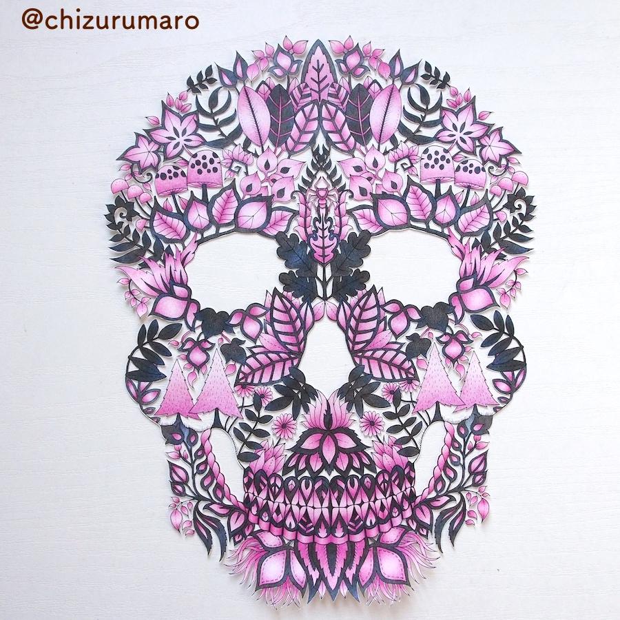 f:id:chizurumaro:20170309194812j:plain