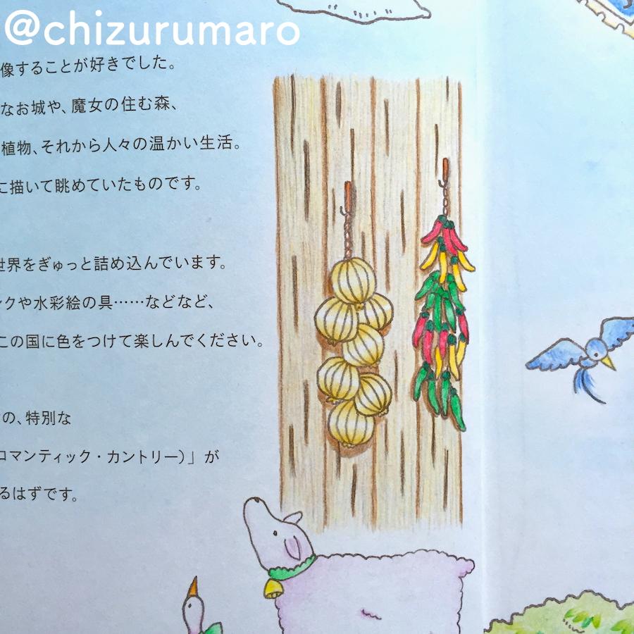 f:id:chizurumaro:20170510175656j:plain