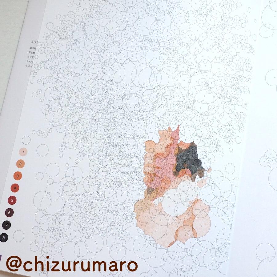 f:id:chizurumaro:20170609160010j:plain