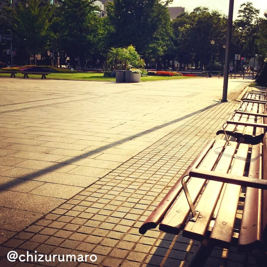 f:id:chizurumaro:20170610233336j:plain