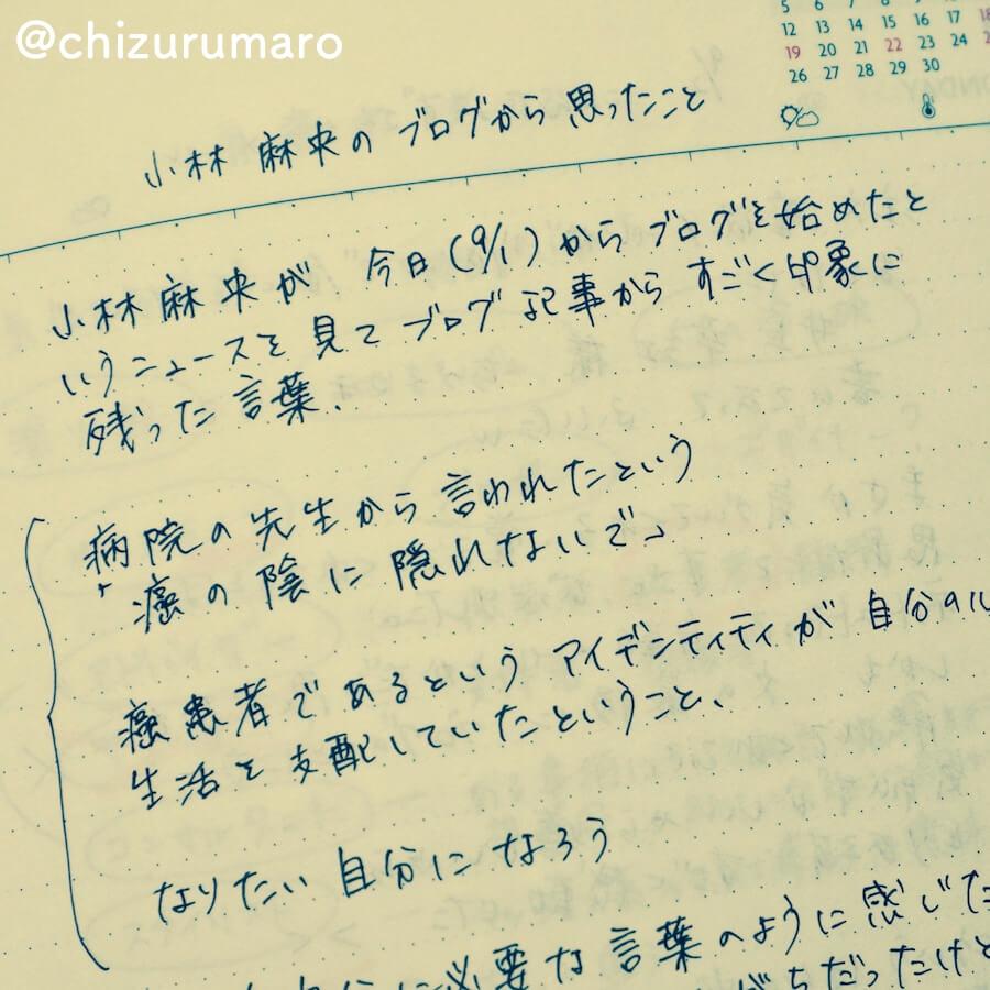 f:id:chizurumaro:20170626205825j:plain