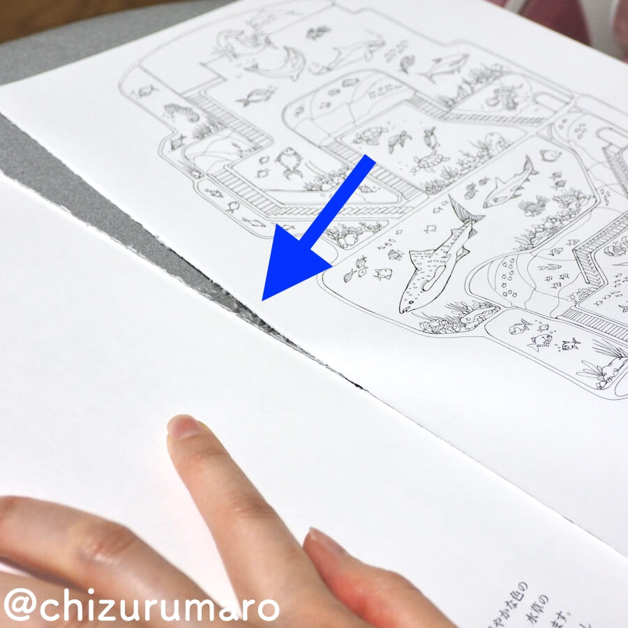 f:id:chizurumaro:20170912162549j:plain
