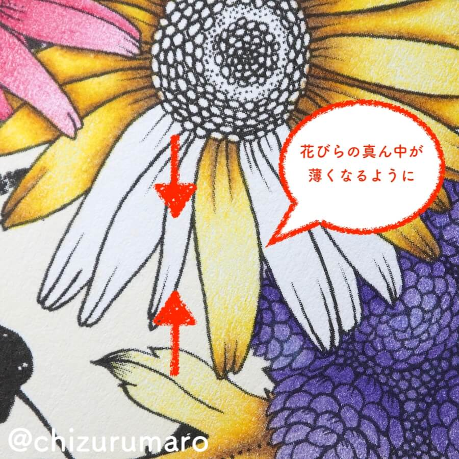f:id:chizurumaro:20180619115434j:plain