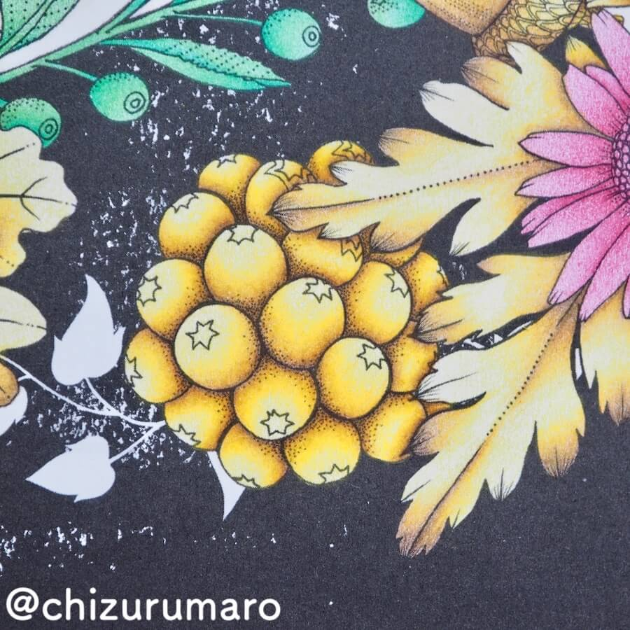 f:id:chizurumaro:20180619150917j:plain